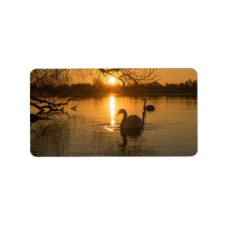 Etiqueta Por do sol com cisne