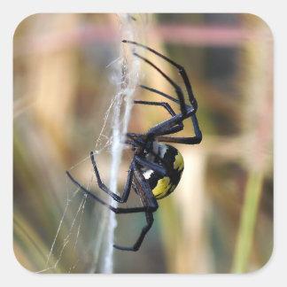 Etiqueta preta & amarela da aranha de jardim do