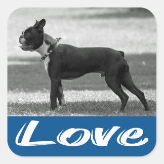 Etiqueta preta & branca do amor de Boston Terrier Adesivo Em Forma Quadrada