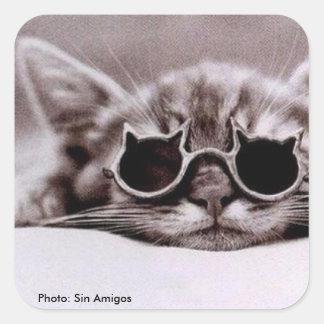 Etiqueta quadrada: O gato o mais fresco vivo
