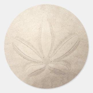 Etiqueta redonda do dólar de areia