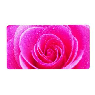 Etiqueta Rosa do rosa