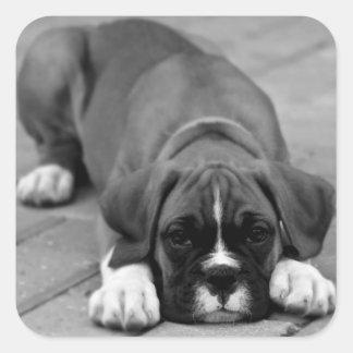 Etiqueta selo preto e branco do cão de filhote de adesivo em forma quadrada