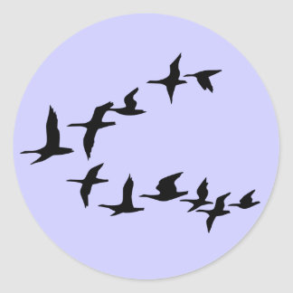 Etiqueta sul dos gansos do vôo adesivo
