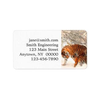 Etiqueta Tigre e filhote - tigre