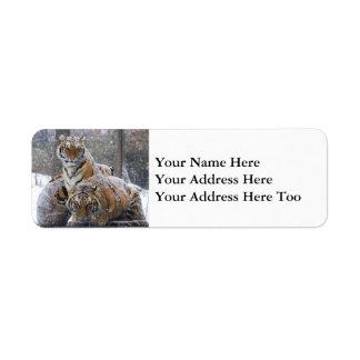 Etiqueta Tigres do inverno