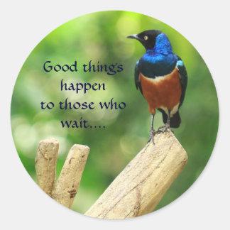 Etiqueta tropical das citações do pássaro adesivo