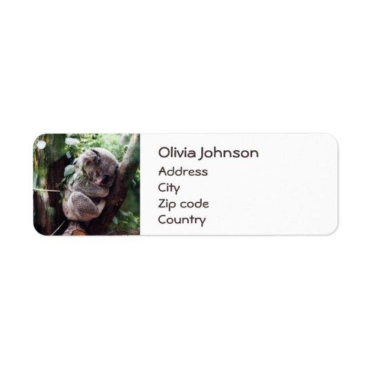 Etiqueta Urso de Koala bonito que relaxa em uma árvore