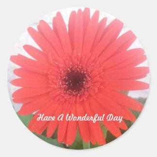 Etiqueta vermelha da flor da margarida de Gerber