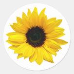 Etiquetas amarelas do selo do envelope da flor do adesivo em formato redondo