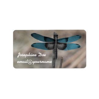 Etiquetas azuis do costume da libélula