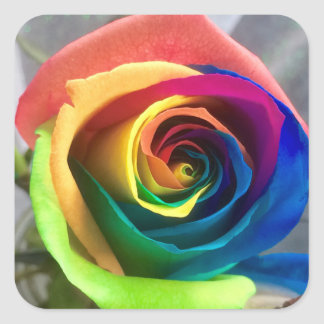 Etiquetas cor-de-rosa do arco-íris