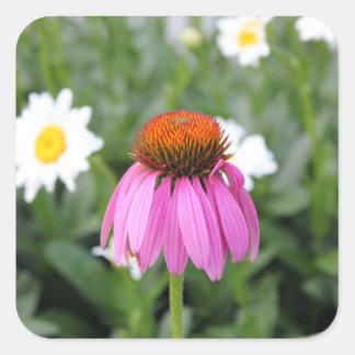 Etiquetas cor-de-rosa do quadrado da flor