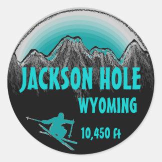 Etiquetas da arte do esqui da cerceta de Jackson Adesivo