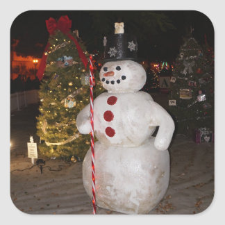 Etiquetas da árvore do boneco de neve & de Natal