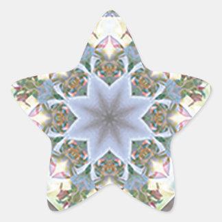 Etiquetas da estrela da mandala da estrela/lavanda adesito estrela