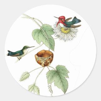 Etiquetas da flor dos animais selvagens do ninho