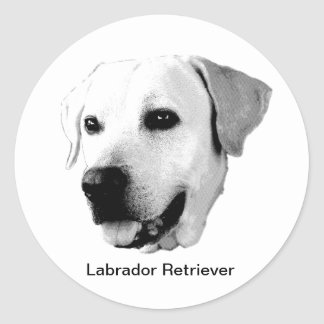 Etiquetas da gravura do cão de labrador retriever adesivo redondo