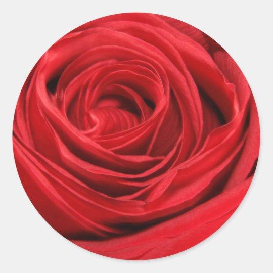 Armario Farmacia Antiguo ~ Etiquetas da rosa vermelha adesivo Zazzle