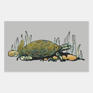 etiquetas da tartaruga do pântano