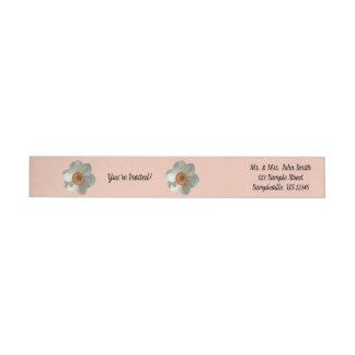Etiquetas Daffodil cor-de-rosa