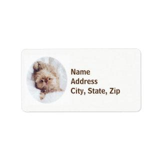 Etiquetas de endereço alaranjadas do filhote de