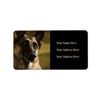 Etiquetas de endereço da foto do german shepherd