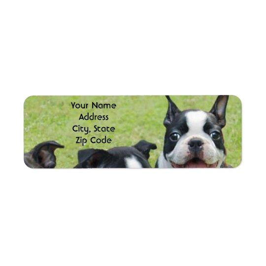Etiquetas de endereço de Boston Terrier Etiqueta Endereço De Retorno