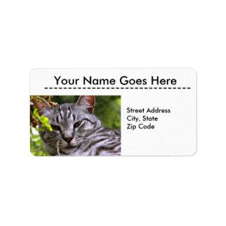 Etiquetas de endereço de prata da cabeça do gato etiqueta de endereço