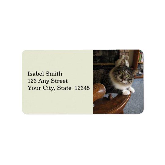 Etiquetas de endereço de Zorro do gatinho do