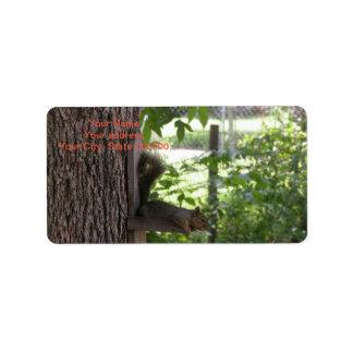Etiquetas de endereço do esquilo