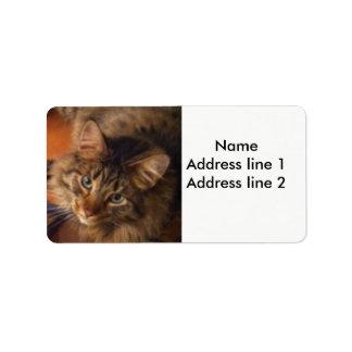 Etiquetas de endereço do gato etiqueta de endereço