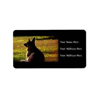 Etiquetas de endereço do german shepherd