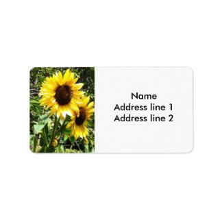 Etiquetas de endereço do girassol etiqueta de endereço