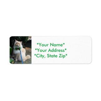 Etiquetas de endereço do remetente
