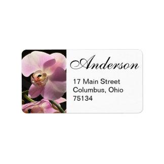 Etiquetas de endereço do remetente cor-de-rosa da etiqueta de endereço