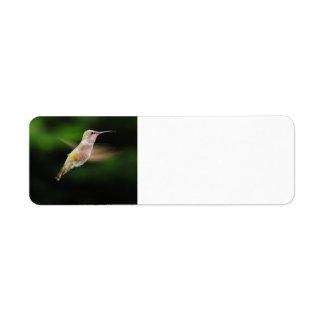 Etiquetas de endereço do remetente do colibri etiqueta endereço de retorno