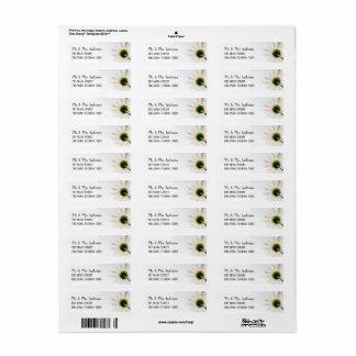 Etiquetas de endereço do remetente do girassol