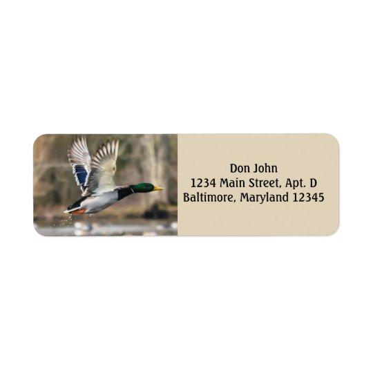 Etiquetas de endereço do remetente do pato do vôo etiqueta endereço de retorno