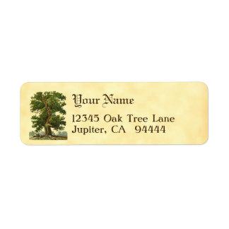 Etiquetas de endereço do remetente feitas sob
