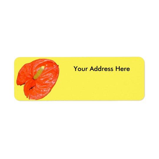 Etiquetas de endereço do remetente - lanterna etiqueta endereço de retorno
