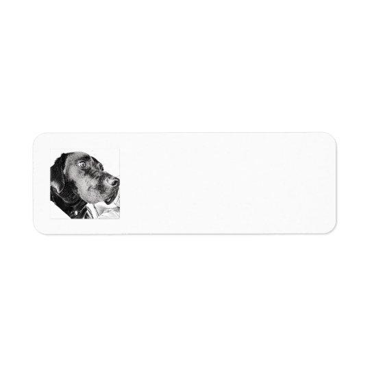 Etiquetas de endereço do remetente pretas do