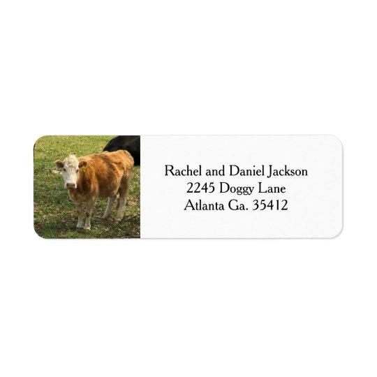 Etiquetas de endereço louras da vaca