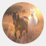 Etiquetas de galope dos cavalos selvagens adesivo em formato redondo