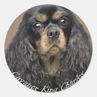 Etiquetas descuidados do Spaniel de rei Charles