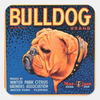 Etiquetas do buldogue do vintage