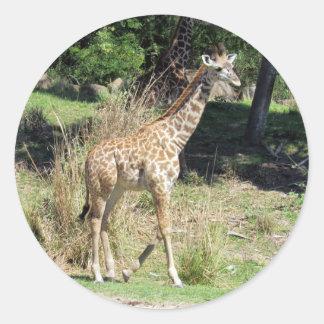 Etiquetas do girafa do bebê