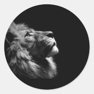 Etiquetas do leão