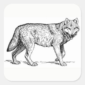 Etiquetas do lobo