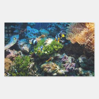 Etiquetas do recife de corais